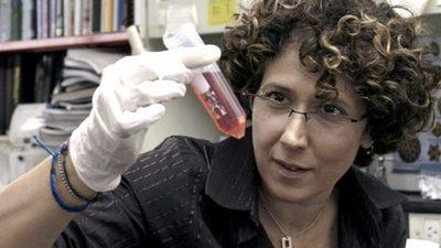 Las vacunas Sputnik V y Pfizer generan grandes expectativas
