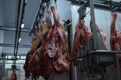 Foro Mercosur de la Carne aspira a acuerdos comerciales con el sudeste asiático