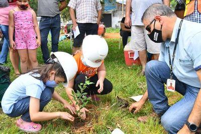 Cultivarán  3.600 árboles nativos en plazas barriales de CDE
