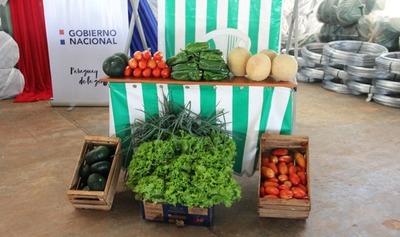 "Programa ""Mi Huerta"" beneficia a 378 familias de Caaguazú"