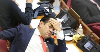 La Nación / Buscan reglamentar ley para blindar a Friedmann, afirman