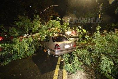 Crónica / Sarambi sorokue dejó el temporal de anoche en Asunción