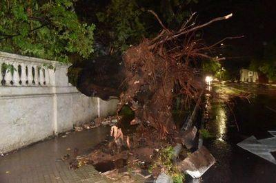 Temporal dejó varios destrozos en Asunción – Prensa 5