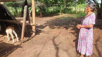 ¡Desalmados!: roban dos lecheras a humilde viuda