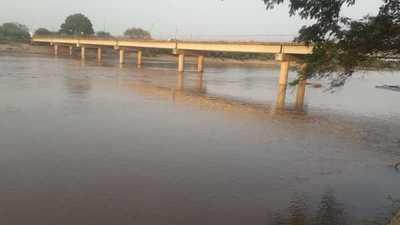 Valiosas lluvias cayeron en el Pilcomayo