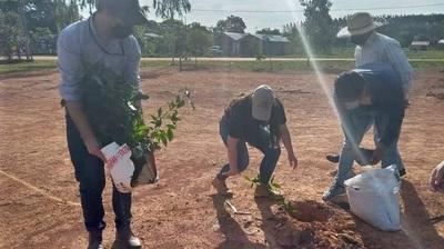 Caazapá: Arborizan el asentamiento Roque Sarubbi