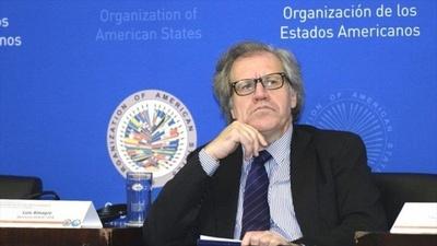 Luis Almagro felicitó al presidente electo de Perú Francisco Sagasti
