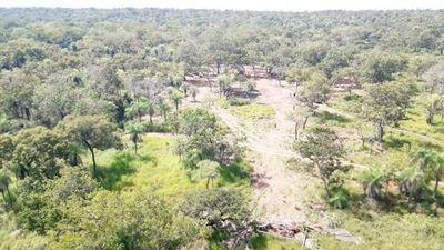Finalmente emiten primer borrador del Código Ambiental Paraguayo