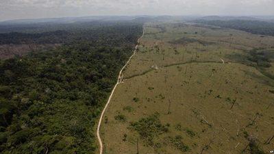 Código Ambiental: Una deuda a saldar en el país