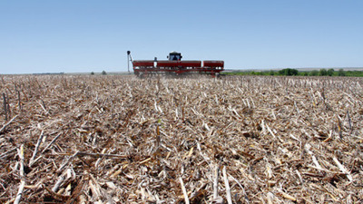 El potencial de transformar campos ganaderos a agrícolas en el Chaco
