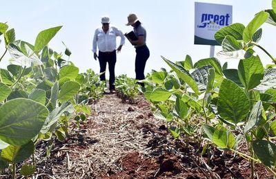 Casi 20 años creando semillas con genética para los productores