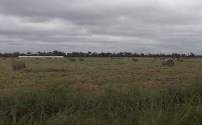 Indígenas exigen acceso a agua en tierras que ganaderos alegan son suyas