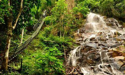 Canindeyú, un destino imperdible para conocer las Reservas Naturales del Paraguay