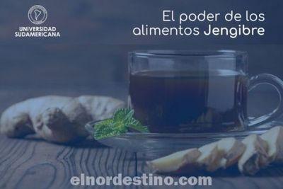 Universidad Sudamericana recomienda el jengibre y otros como positivos para la actividad del tracto gastrointestinal