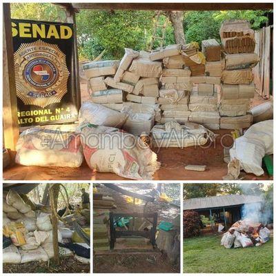 SENAD incautó más de 41 Toneladas durante allanamientos en Maracaná, Canindeyú