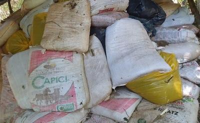 Incautan más de 41 toneladas de marihuana en Canindeyu