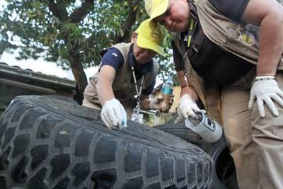 Se están registrando numerosos criaderos y recipientes con larvas en las viviendas