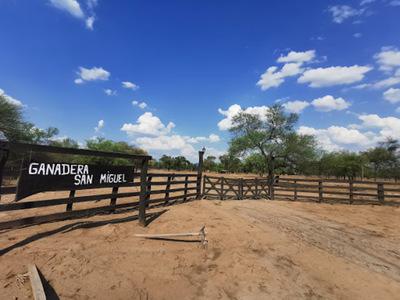 """Ganaderos están """"convencidos"""" de una injerencia política detrás de tierras en el Chaco"""
