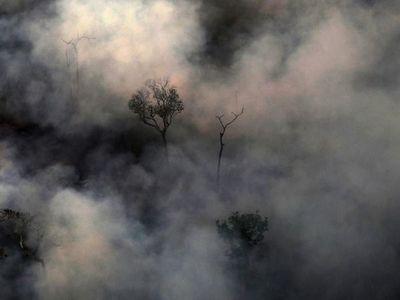 Incierto futuro del acuerdo UE-Mercosur por la Amazonía
