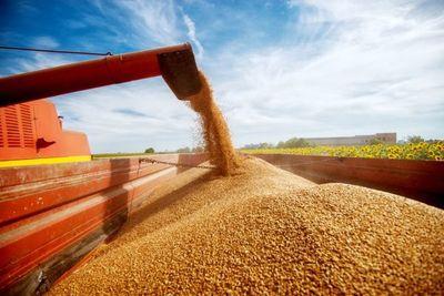 Demanda de China y efectos de la sequía disparan los precios de la soja