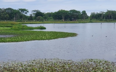 Laguna Ka'aguy: Un encanto natural que podría ser un atractivo turístico