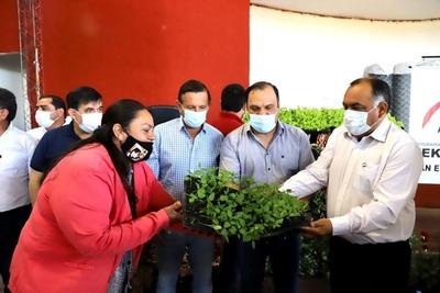Entregan insumos para microemprendimientos productivos a 423 familias de San Pedro