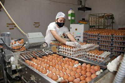El orgullo de producir alimento completo y económico