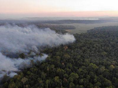 Incendio consume reserva San Rafael y piden declarar emergencia