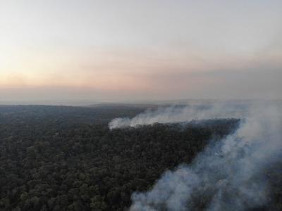 Incendio devora reserva San Rafael y urgen declarar estado de emergencia