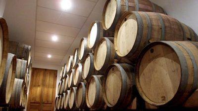 Buenas perspectivas para los vinos argentinos