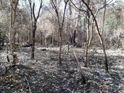 Fuerte incendio en la Reserva San Rafael