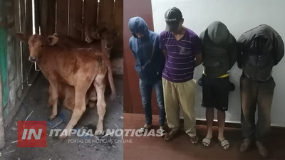 AGENTES DE BRIGADA ANTIABIGEATO RECUPERAN ANIMALES VACUNOS EN CNEL. BOGADO