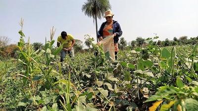Provechosos préstamos del CAH sustentan a pequeñas empresas y la agricultura familiar campesina