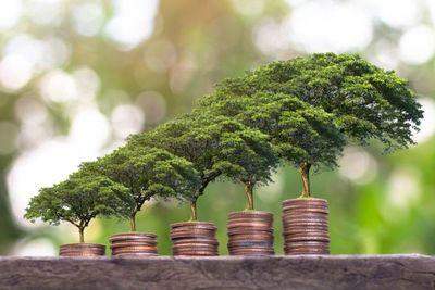 BCP se suma a red de Bancos Centrales que se enfocan en la economía sostenible