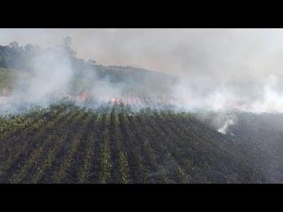 ALARMANTE, BOMBEROS DE ENCARNACIÓN REGISTRAN HASTA 18 INCENDIOS POR DÍA