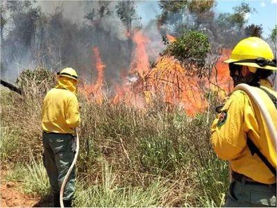 Incendios forestales de gran magnitud en Misiones e Itapúa