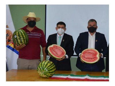 Harán la primera Feria de Sandía en San Pedro del Paraná