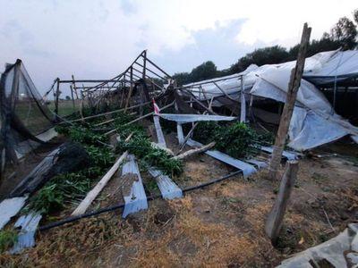 Tormenta seca perjudicó a productores de Misiones