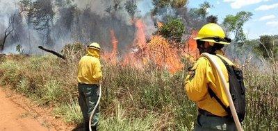 Precipitaciones en Ayolas permitieron controlar la propagación de los incendios, señalan
