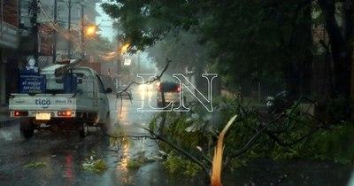 La Nación / Tormenta deja semáforos fuera de servicio y árboles caídos