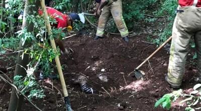 Hallan cuatro cadáveres en fosa común, en Pedro Juan