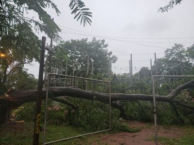 Temporal causó algunos daños y dejó  sin energía eléctrica al Hospital Nacional