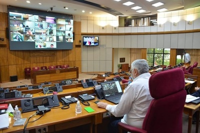 Senado rechazó el veto de Mario Abdo sobre fondos binacionales
