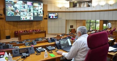 La Nación / Gastos socioambientales: Senadores rechazan veto del Poder Ejecutivo