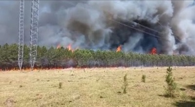 Incendios en Isla Yacyretá y Ayolas fueron provocados