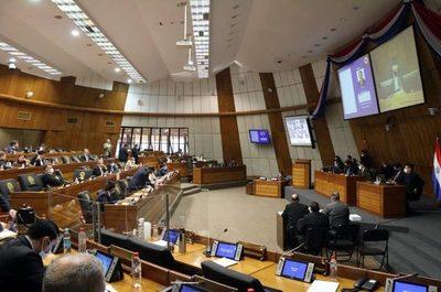 Oposición buscará votos para rechazar el veto en Diputados