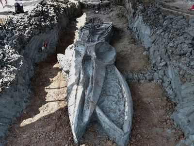 Descubren el fósil casi intacto de un cetáceo de 3.000 años