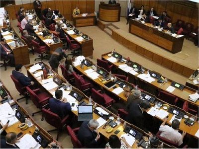 Ceguera parlamentaria