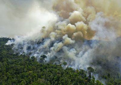 """Ecologistas dicen que plan de Bolsonaro para destruir Amazonía """"es exitoso"""""""