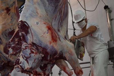 Faena de bovinos en frigoríficos exportadores bajó 18,2% en noviembre